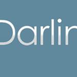 Todo lo que debes saber sobre Edarling [2020]